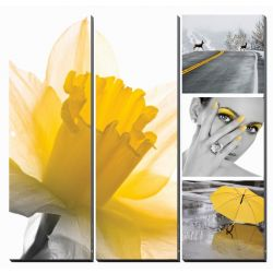 "Fresh Daffodi  Ensemble Canvas Mural 36"" x 36"""