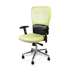 Lime Fusion Euro Salon Chair with Chrome Base