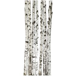 "Regal Wall Decal - Birch Tree - 7 Trunks (96""H)"